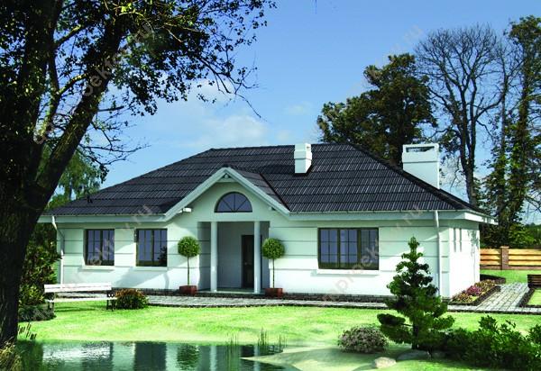 Фасады одноэтажных домов фасад дома